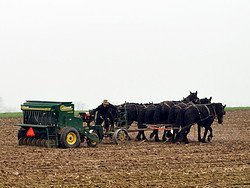 Lancaster Amish Community, traditional plow