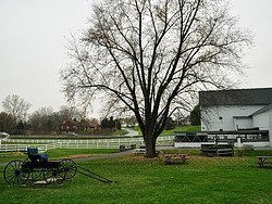 Amish from Lancaster, Amish Village