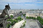 Notre Dame, gargola