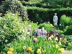 Jardin des Plantes in spring