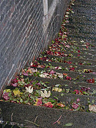 Praga en otoño