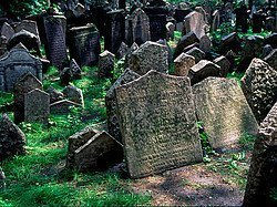 Old Jewish Cemetery tombs