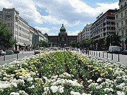 Plaza de Wenceslao, Nove Mesto