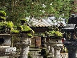 Nikko y su increíble vegetación