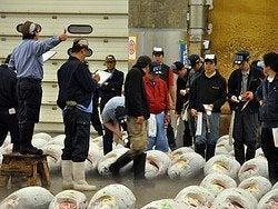 Mercado de Tsukiji, subasta de atunes
