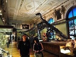 Museo de Historia Natural, dinosaurios