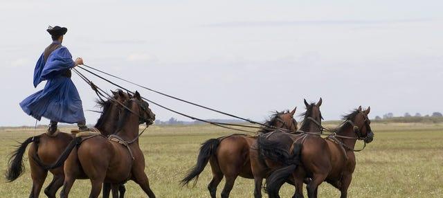 Puszta Day Trip with Equestrian Show