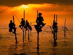 Los famosos pescadores de Sri Lanka