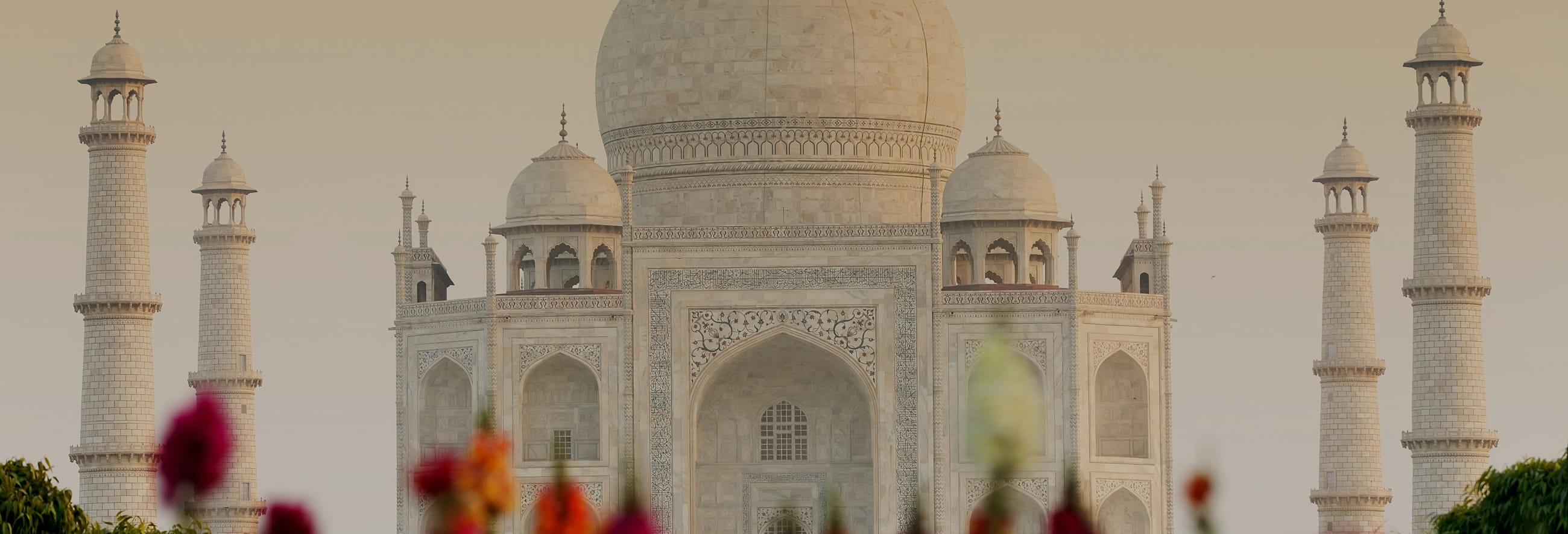 Taj Mahal and Agra Fort Tour