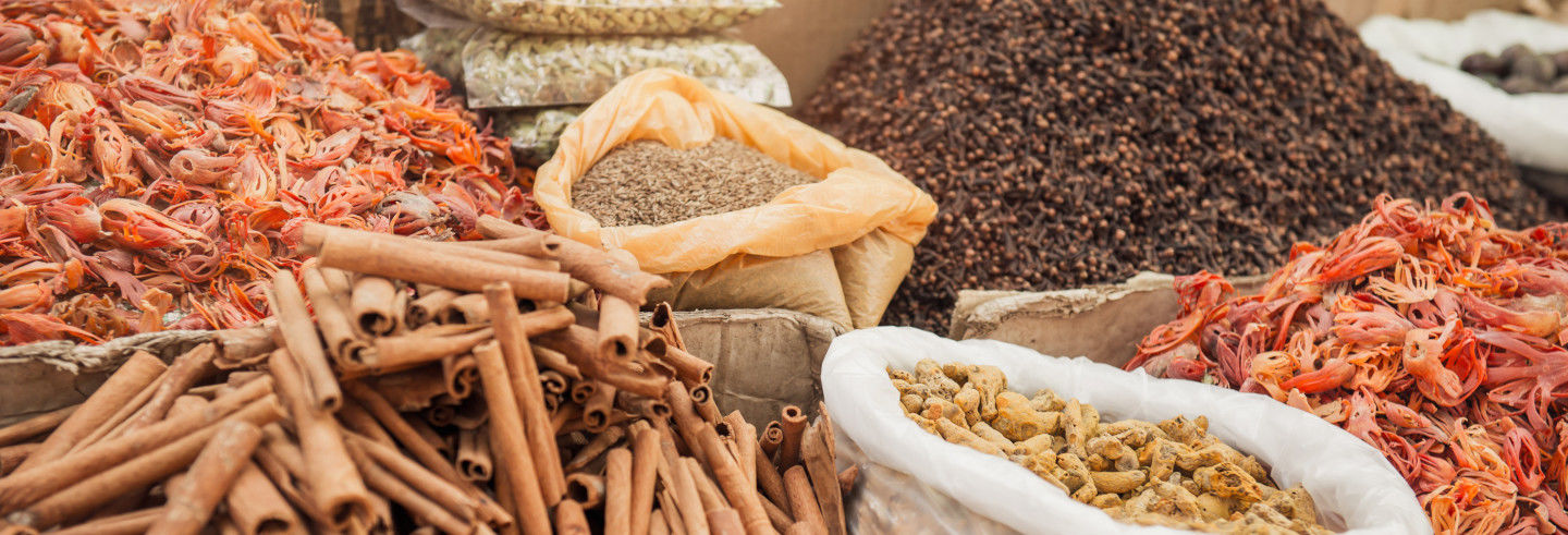 Tour gastronomique à Alappuzha