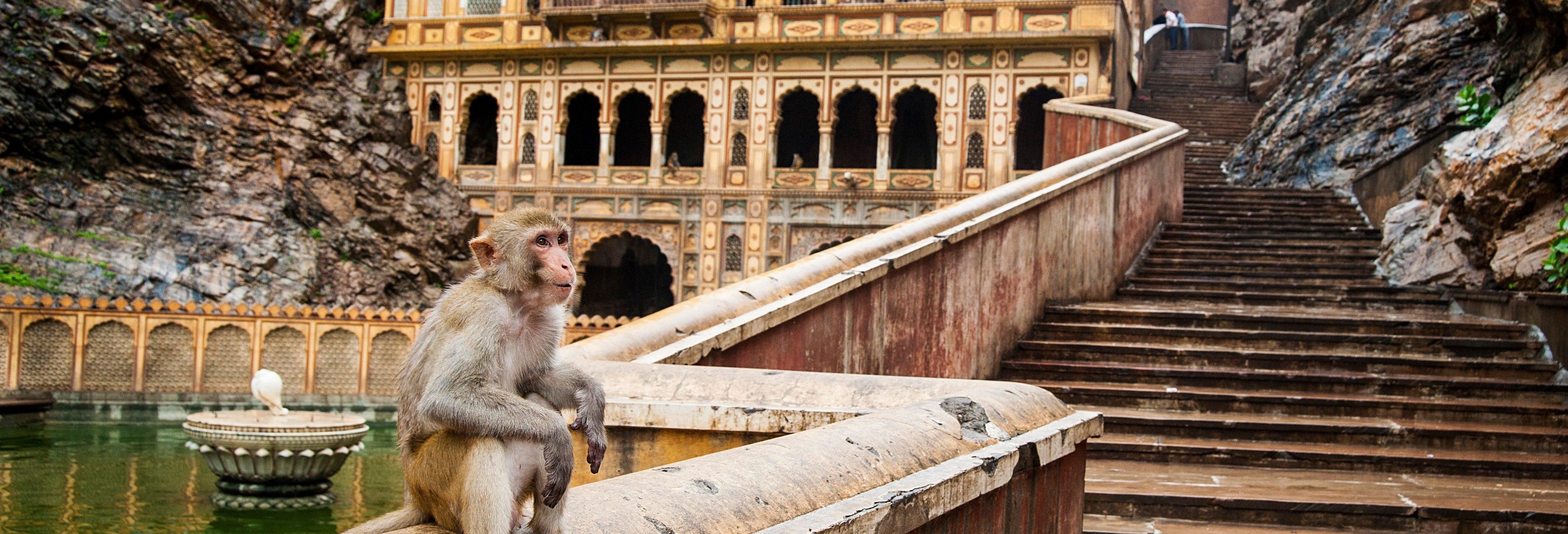 Excursión a Jaipur
