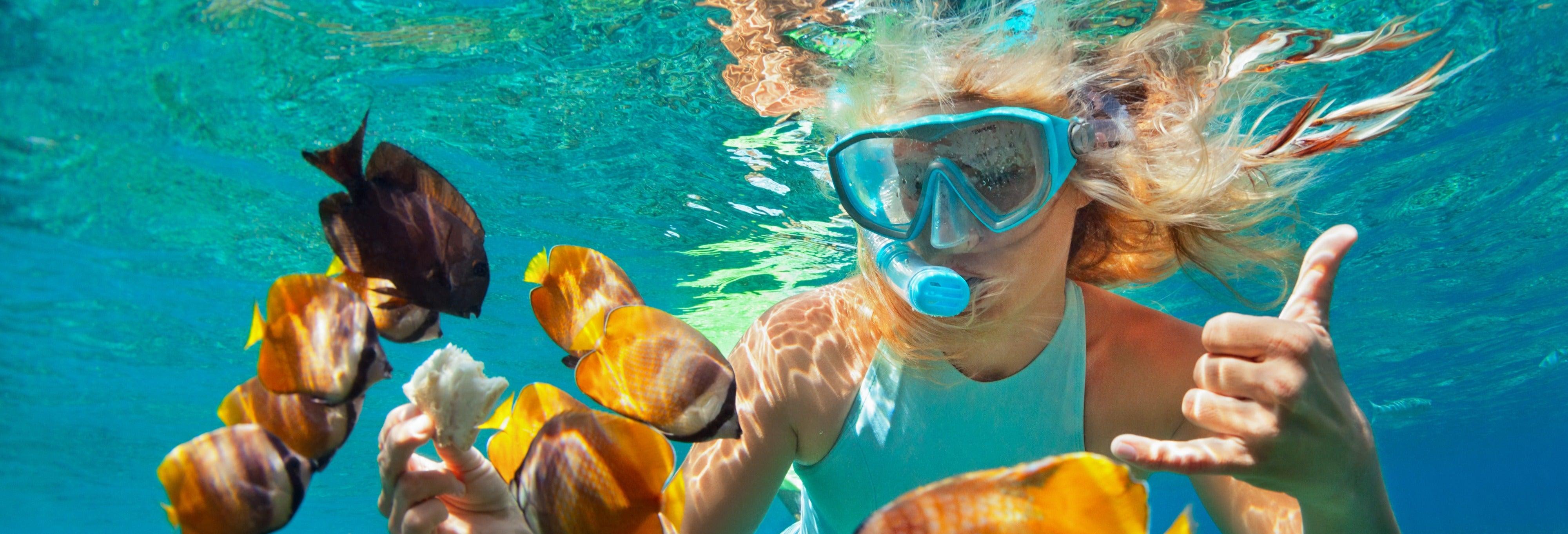 Snorkel en la Laguna Azul de Padangbai