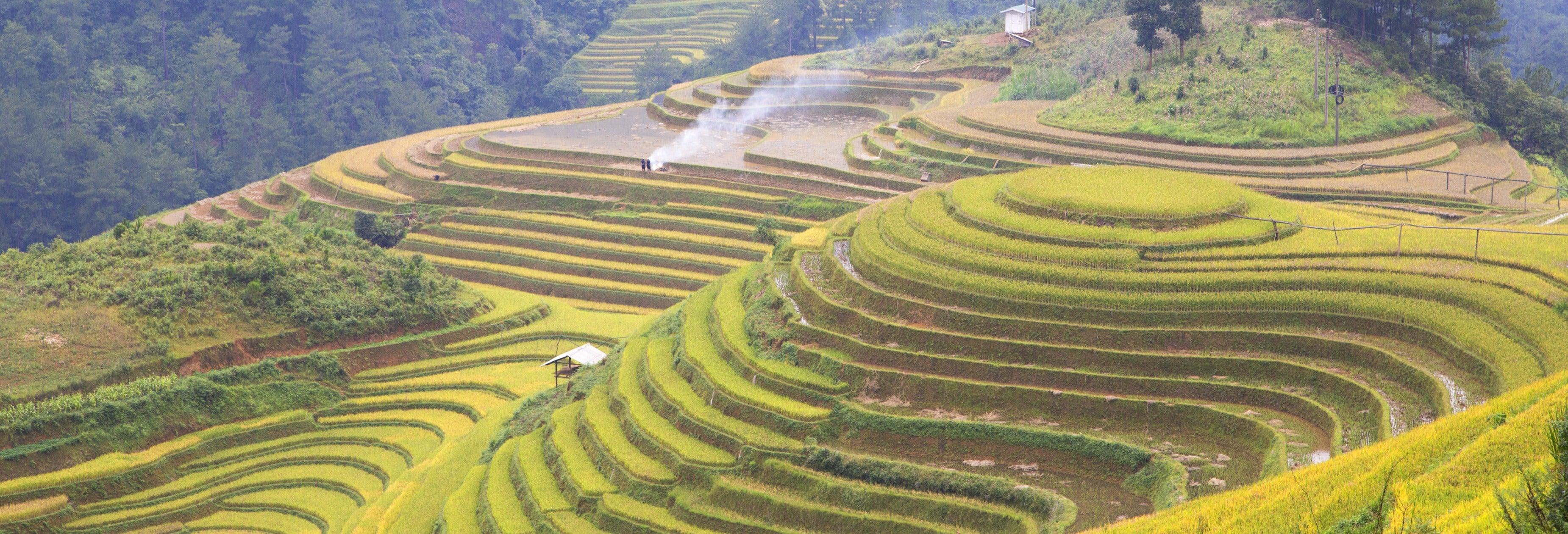 Bike Tour of Bali Rice Terraces