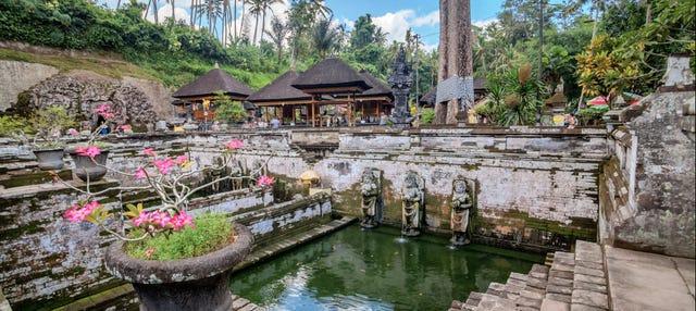 Visite d'Ubud, Goa Gajah et du centre de Bali