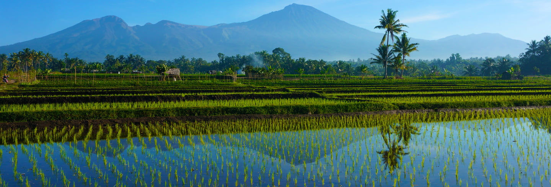 Tour completo pela ilha de Lombok