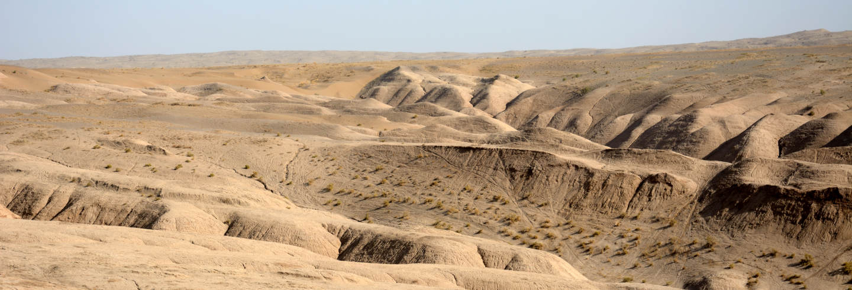 Desert safari por el Maranjab
