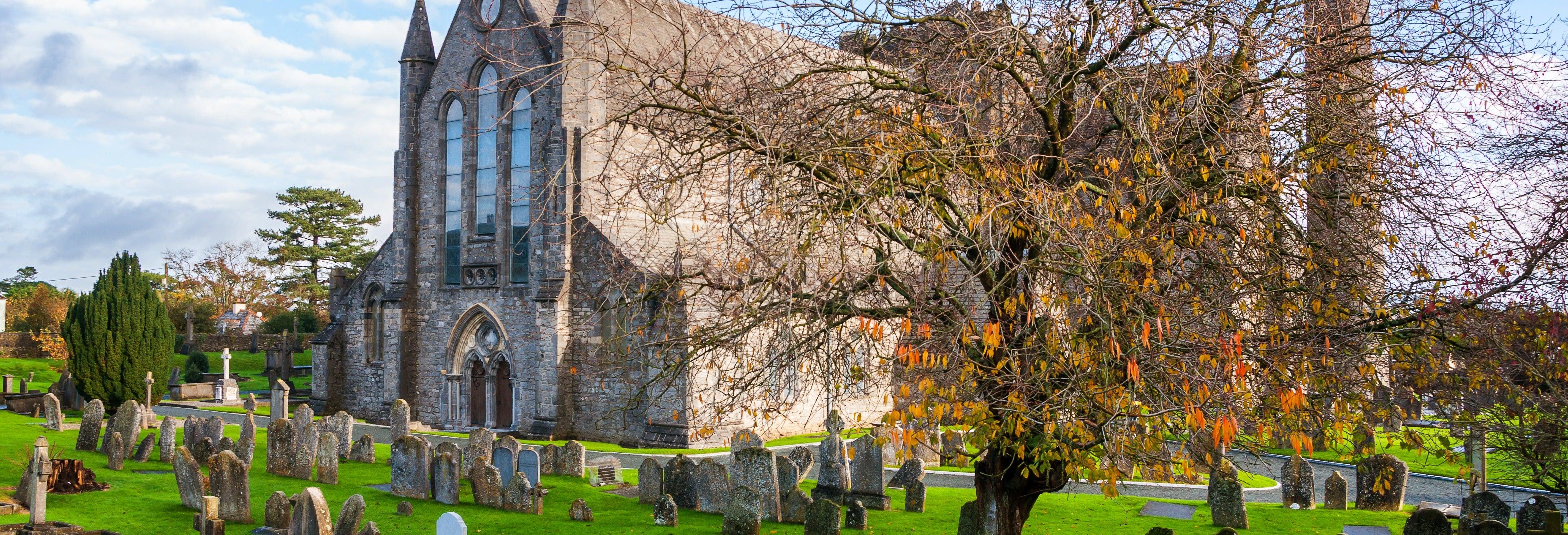 Visita guiada por Kilkenny
