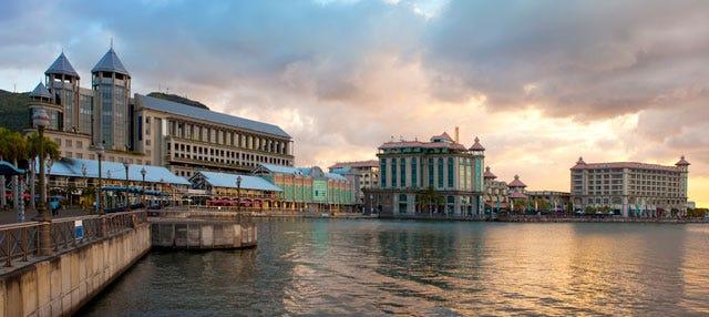 Excursión a Port Louis y Pamplemousses