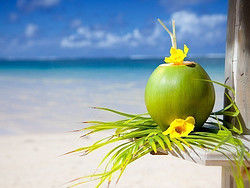 Disfrutando de un coco en una playa paradisiaca