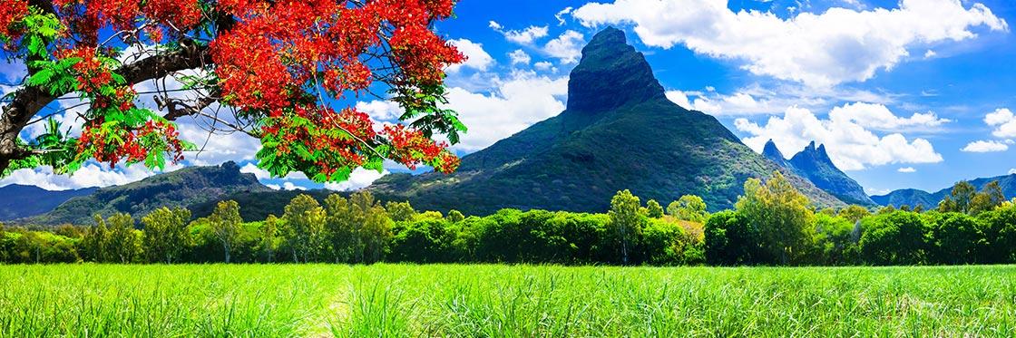 Consejos para viajar a Isla Mauricio