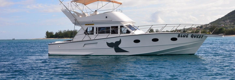 Exploration de la vie marine mauricienne