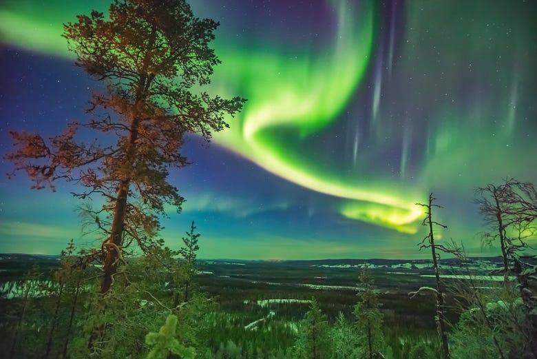 Tour de la aurora boreal desde Reikiavik - Civitatis.com