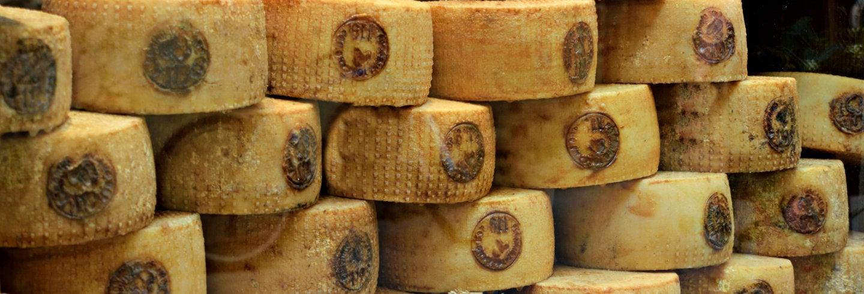 Tour del vino y el queso pecorino
