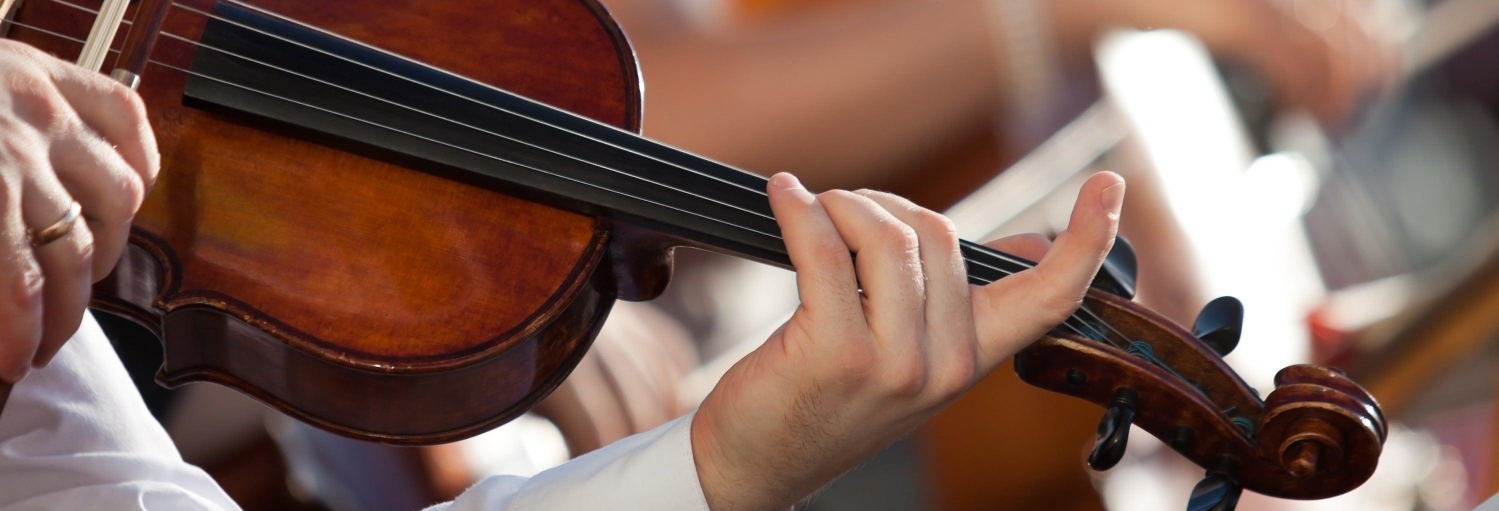 Concerto dell'orchestra Collegium Ducale