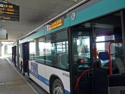 Venice's Buses