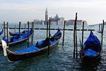 Guided Tour of Venice