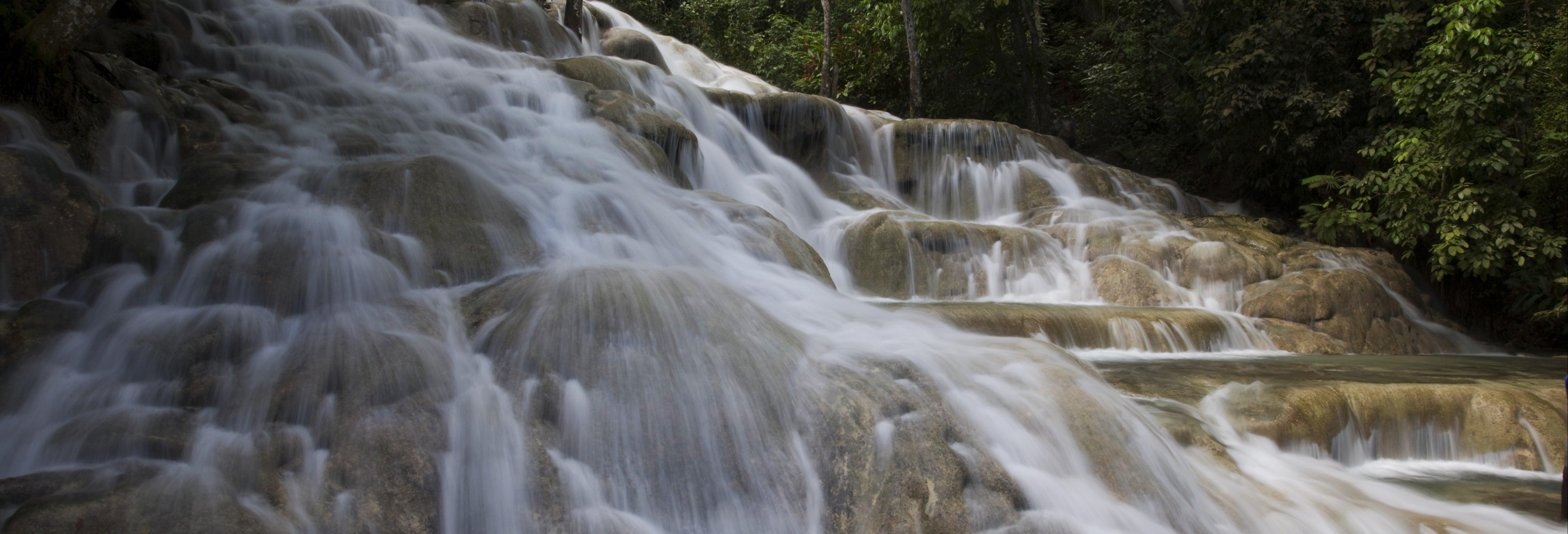 Bob Marley, Dunn's River Falls & Luminous Lagoon Tour