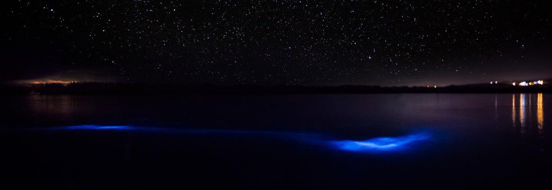 Excursion nocturne au lagon lumineux