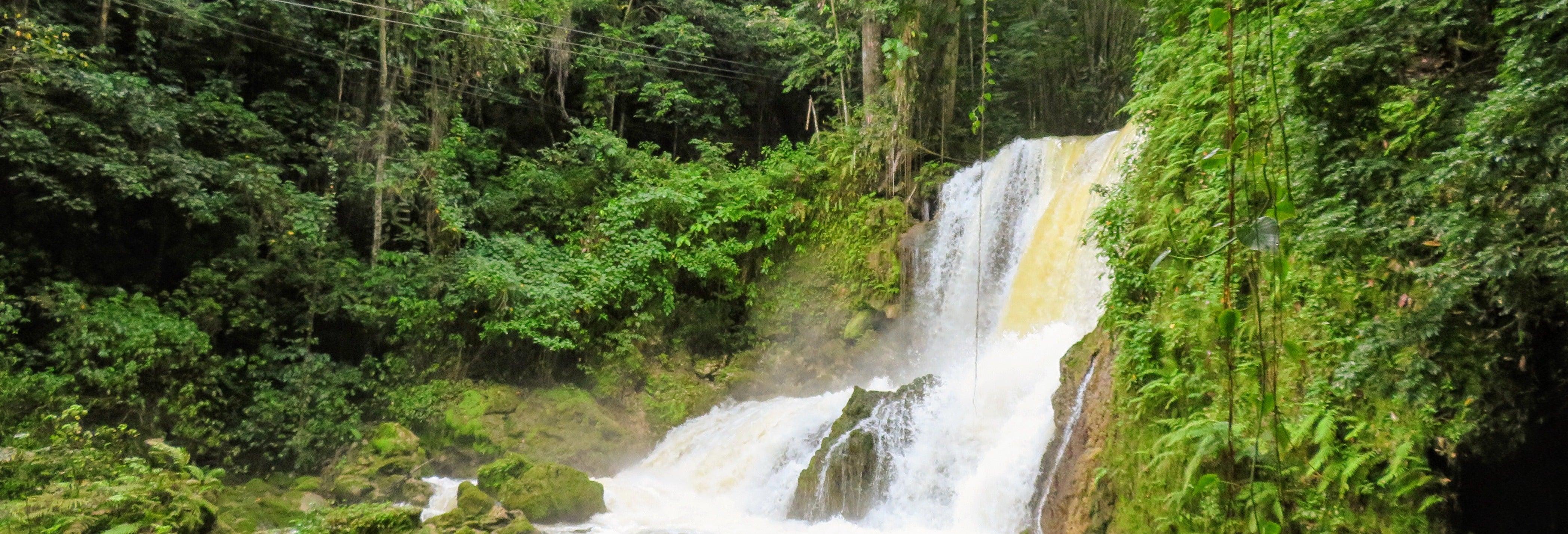 Escursione a Black River e alle Cascate YS