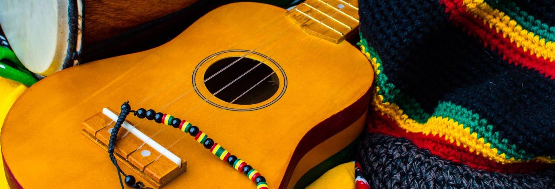Tour de Bob Marley + Cascadas del río Dunn