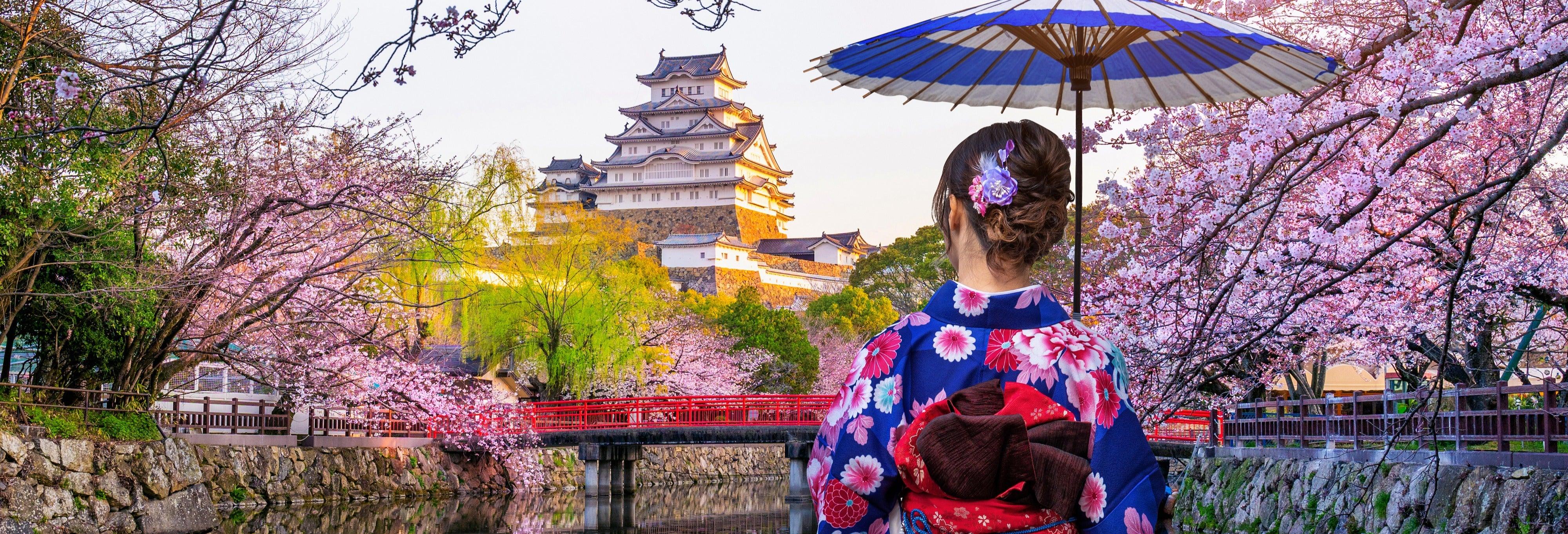 Visite guidée du château de Himeji