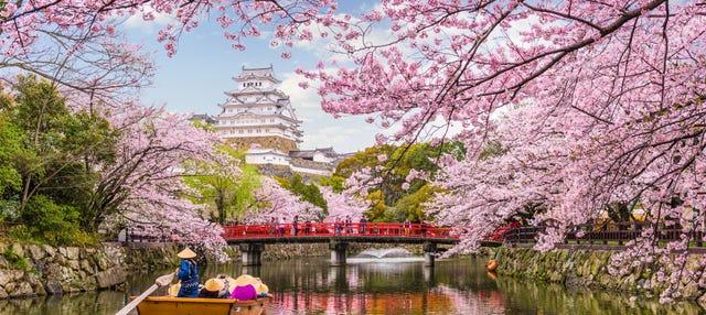 Tour por Kōbe y Himeji