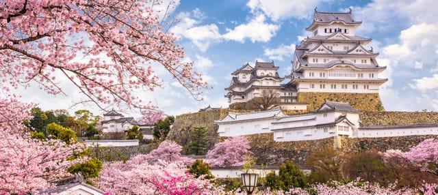 Excursión a Himeji y Kobe