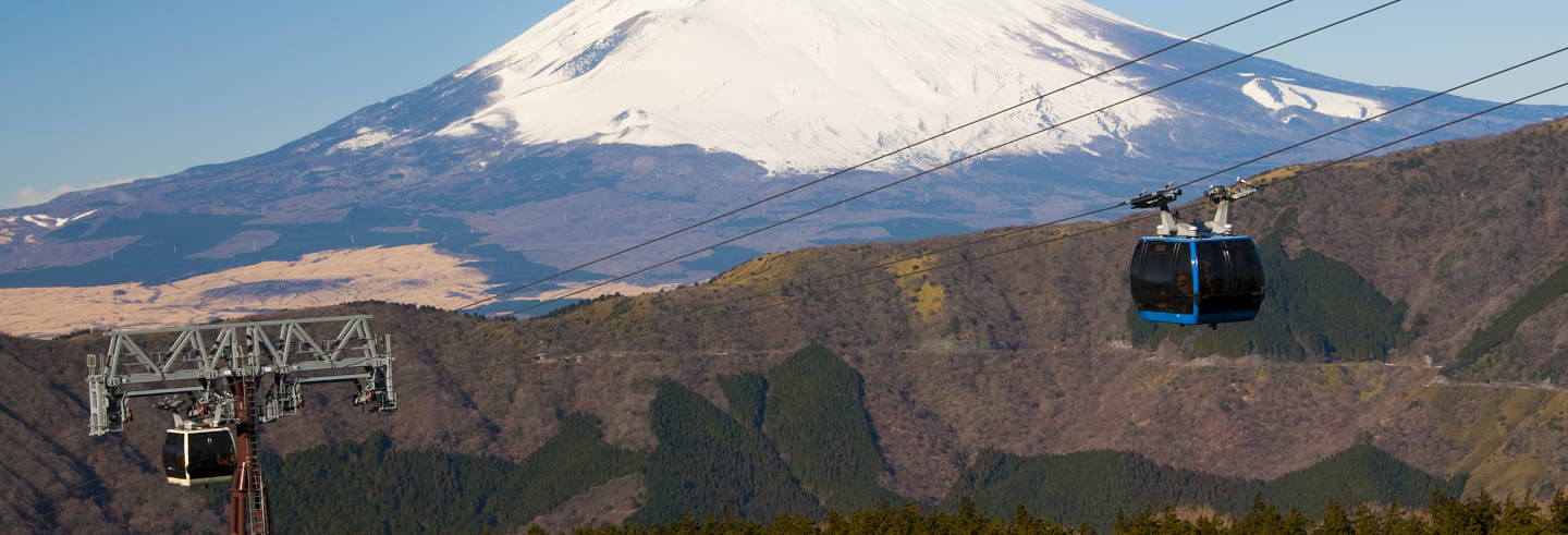 Escursione ad Hakone e belvedere del Monte Fuji