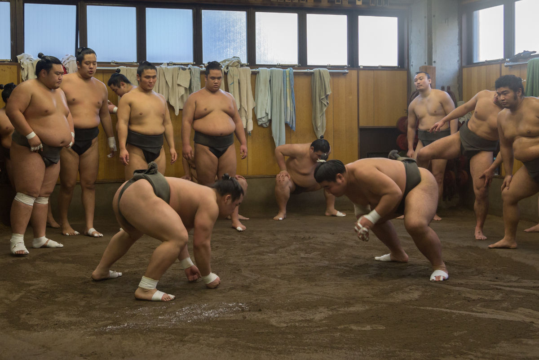,Espectáculo de Sumo,Solo entrada a entrenamiento