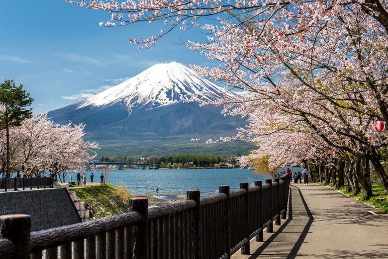 ,Excursión a Monte Fuji,Excursion to Monte Fuji,Con visita a Lago Kawaguchi