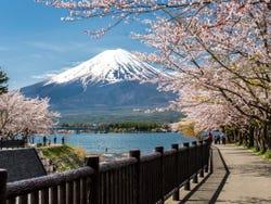,Excursión a Monte Fuji,Con visita a Lago Kawaguchi