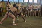 Entrada a un entrenamiento de sumo