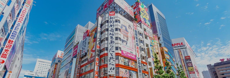 Oferta: Tour por Harajuku y Akihabara