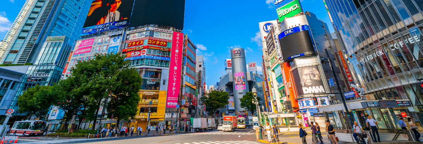 Guided Tour of Harajuku, Shibuya and Omotesando