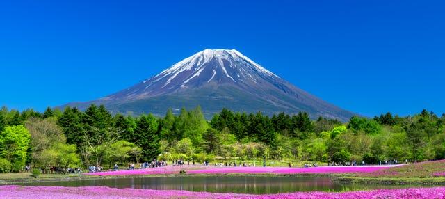 Excursión al monte Fuji, lago Kawaguchi y recogida de fruta