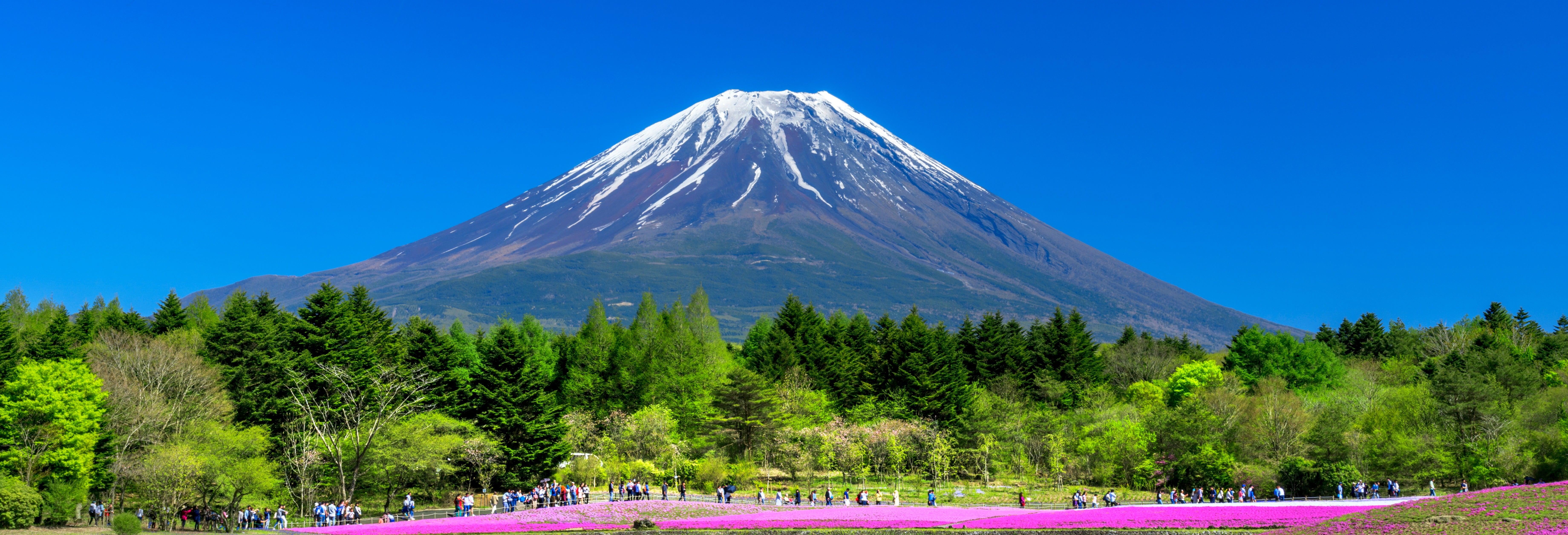 Mount Fuji & Fruit Picking Day Trip