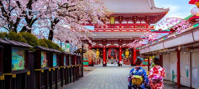 Tour privado por Tokio con guía en español