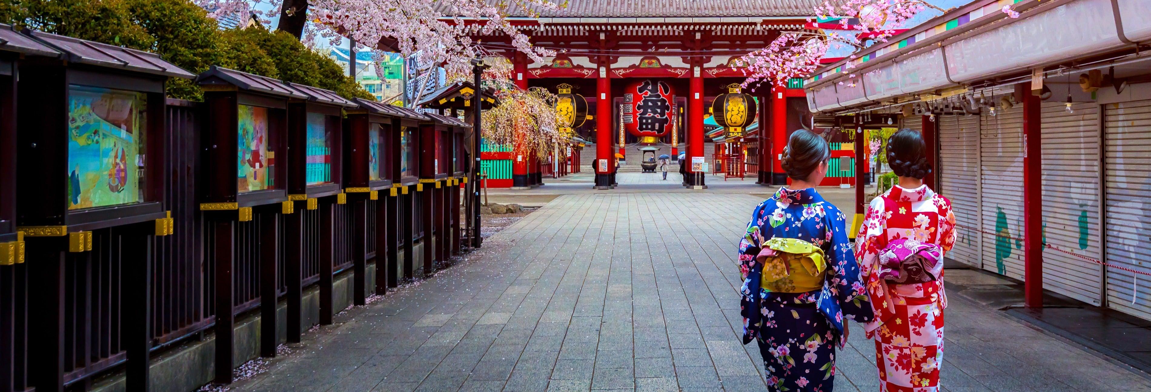 Tour privado por Tóquio com guia em português