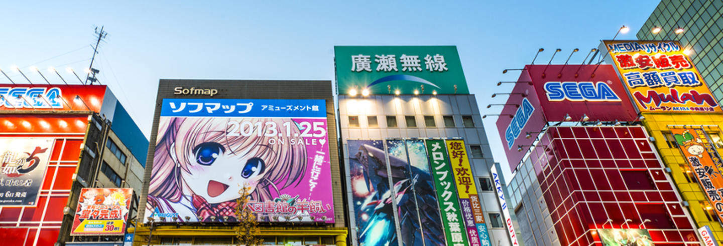 Guided Tour of Akihabara