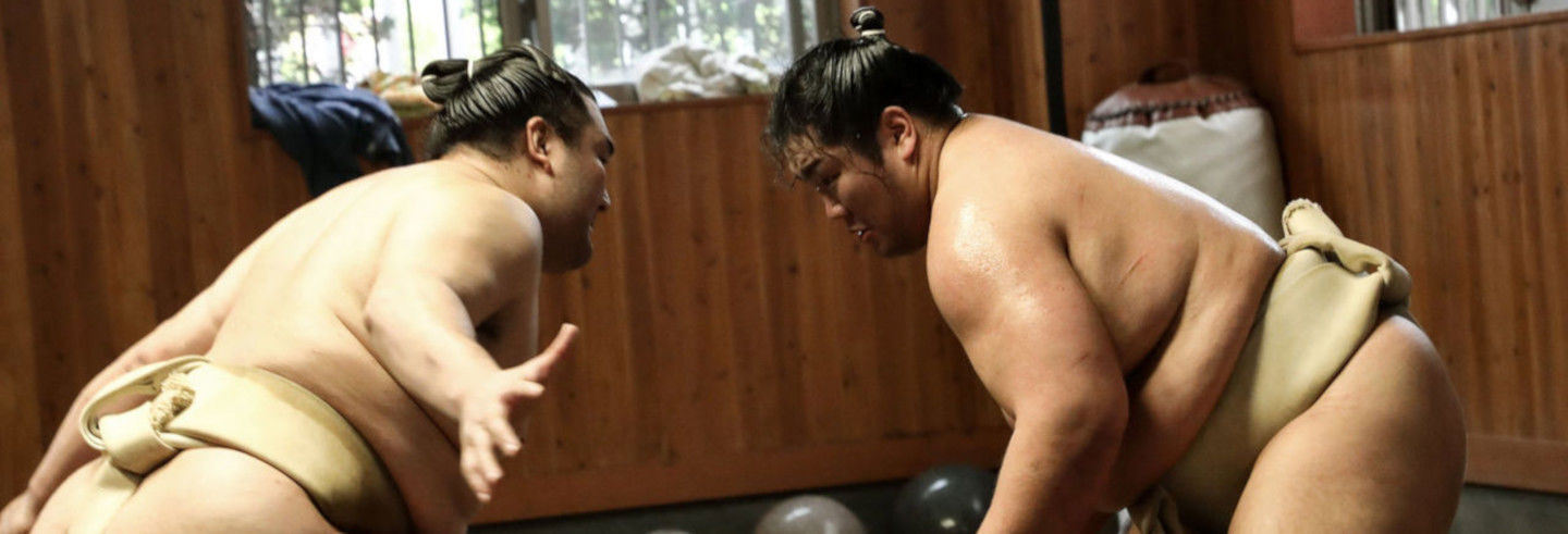 Watch Sumo Demonstration